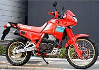 Nx650