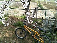 Img_9132